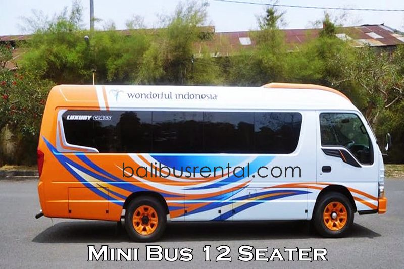 ELF Short 12 Seats Rental Bali