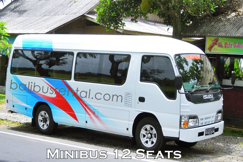 Rental Mini Bus ELF Short 12 Seats Bali